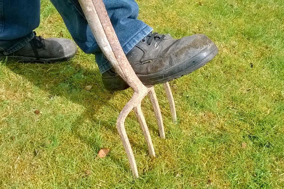 Trawnik idealny. Jak poprawić kondycję swojego trawnika? - Aeracja trawnika