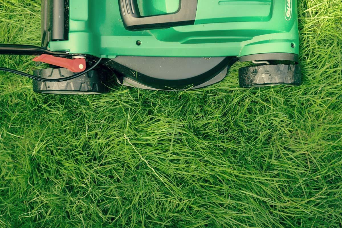 Trawnik idealny. Jak poprawić kondycję swojego trawnika? - Koszenie trawnika