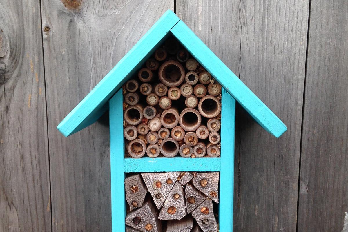 Domek dla pszczół w ogrodzie | Białystok