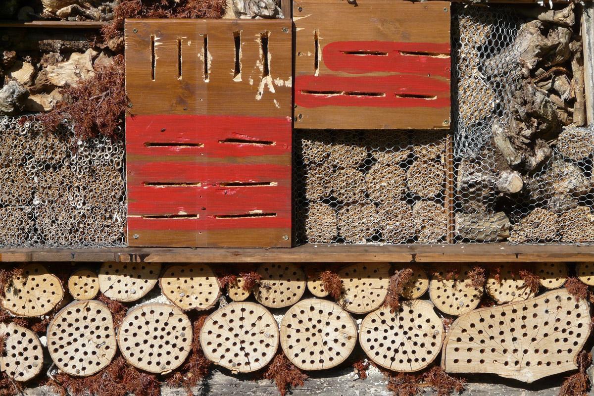 Domek i hotel dla pszczół w ogrodzie | Białystok