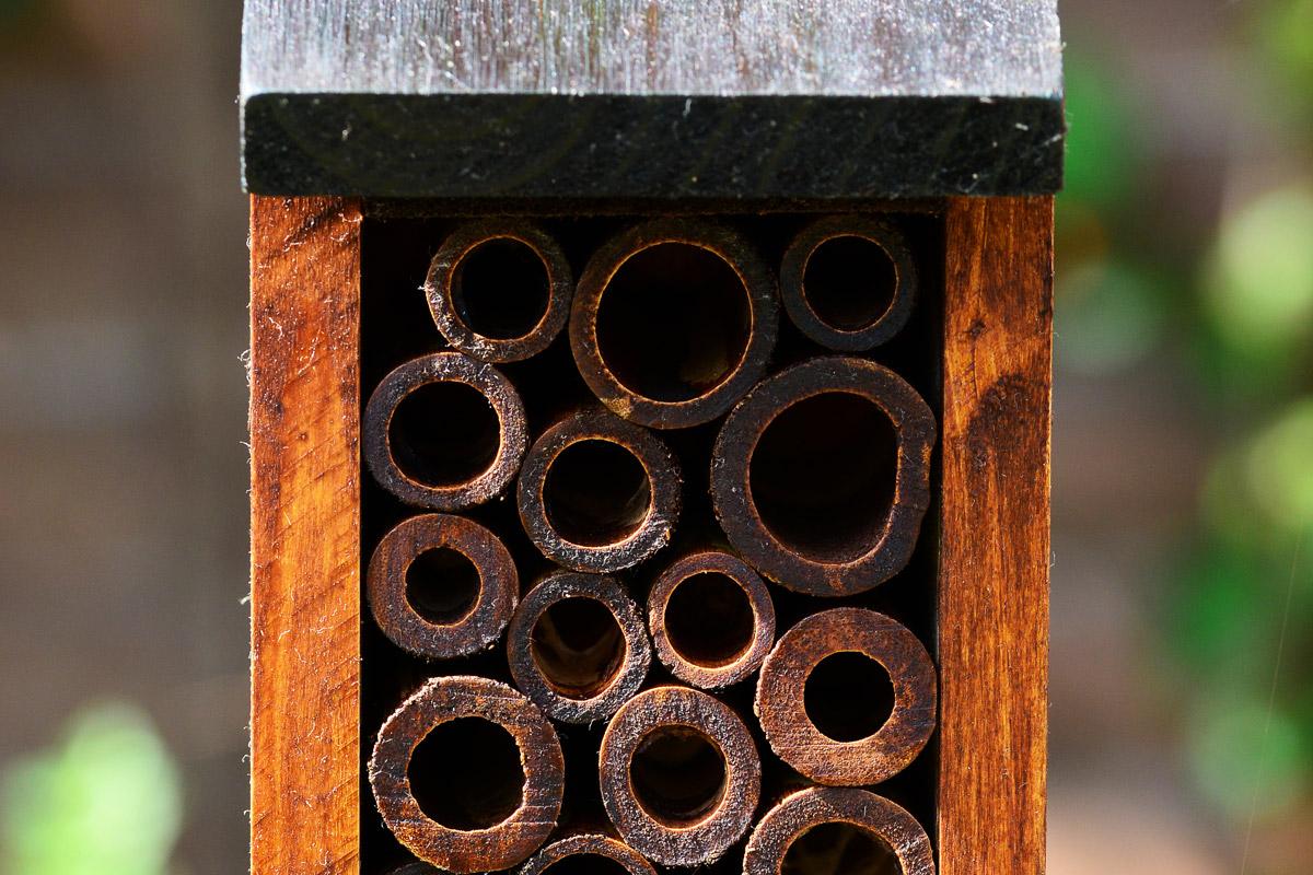 Hotel dla pszczół w ogrodzie | Białystok